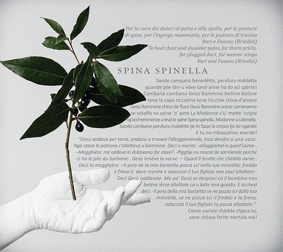 Faraualla---Ogni-Male-Fore---libretto-8